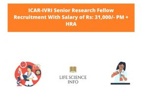 ICAR-IVRI Senior Research Fellow Recruitement With Salary of Rs 31,000- PM + HRA