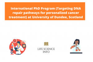 International PhD Program (Targeting DNA repair pathways for personalized cancer treatment) at University of Dundee, Scotland
