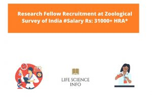 Research Fellow Recruitment at Zoological Survey of India #Salary Rs 31000+ HRA